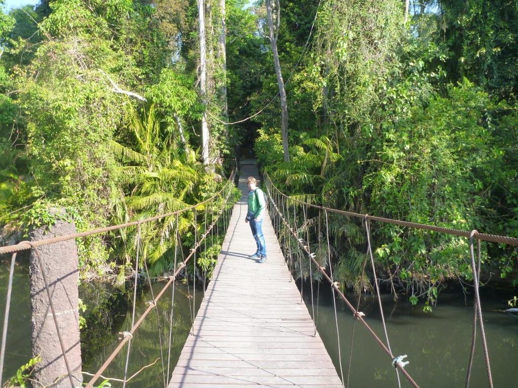 Khao Yai vstupni most do hlukové džungle. Thajsko